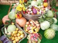 Расширенная осенняя сельскохозяйственная ярмарка пройдёт 23 ноября